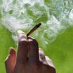 Cómo tratar la adicción al cannabis